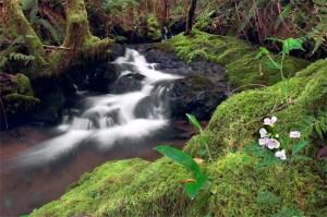 Waterfall-horizontal