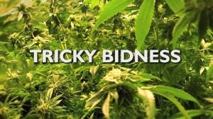 1381171732-trickybidness
