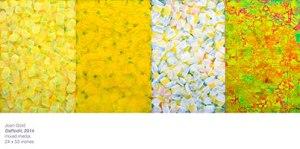 Daffodil_done